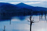 Picture of / about 'Jingellic' New South Wales - Jingellic Dam NSW