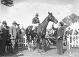 Picture relating to Acton - titled 'Horse with jockey and owner, St Patricks Day Race Club, Spring Cup Meeting at Acton Racecourse.'