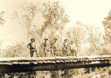 Picture relating to St Mary State Forest - titled 'Bridge construction gang St Mary's Forestry Reserve'