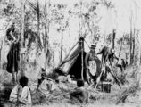 Picture relating to Queensland - titled 'Harriett Brims on location in the Queensland bush, ca. 1880-1890'