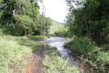 Picture of / about 'Tenthill Creek' Queensland - Tenthill Creek