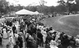 Picture of / about 'Stanthorpe' Queensland - Crowds at the Stanthorpe showgrounds, ca. 1915