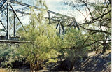 Picture relating to Neeworra - titled 'Main span of the Boomi River bridge, Neeworra'