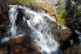 Guy Fawkes River National Park Chaelundi Falls.  It's not just one fall but a series of cascades descending for over a kilometre to the valley floor