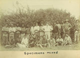 Picture relating to Mackay - titled 'Sugar laborers at the River Estate outside Mackay, ca. 1880'