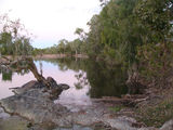 Picture relating to Brien Creek - titled 'O Briens Creek'