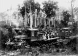 Picture relating to Canungra - titled 'Climax engine, part of the Canungra Pine Creek Tramway, ca. 1905'
