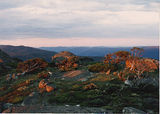 Picture relating to Mount Morgan - titled 'Summit of Mount Morgan on sunset'