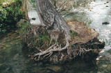 Picture relating to Mole Creek - titled 'Mole Creek'