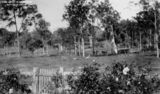 Picture of / about 'Brisbane' Queensland - Lightly timbered land at Wavell Heights, Brisbane, ca.1938