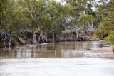 Picture of / about 'Minilya River' Western Australia - Minilya River