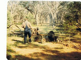 Picture relating to Uteara - titled 'Uteara - Ron Wetzel cutting fire wood'