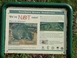 Picture relating to Mount Lofty - titled 'Southern Brown Bandicoot Information Sign'