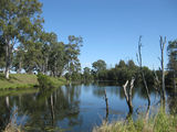 Picture of / about 'Byee' Queensland - Barambah Creek