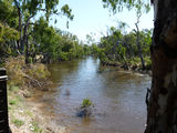 Picture of / about 'Campaspe River' Victoria and New South Wales - The Campaspe at Echuca