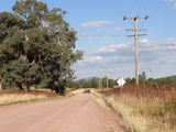 Picture relating to Piallaway - titled 'Oakey Creek Rd'