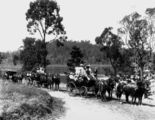 Picture relating to Enoggera - titled 'Day trippers travelling to Enoggera Reservoir, Brisbane, ca. 1896'