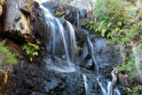 Picture relating to Kanangra Range - titled 'Kalang Falls'