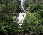 Picture relating to Steavenson Falls - titled 'Steavenson Falls'