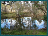 Picture of / about 'Chichester Range' Western Australia -