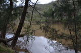 Picture relating to Chowdilla - titled 'Murrumbidgee River at Chowdilla'