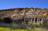 Picture relating to Chichester Range - titled 'Cliff face of Coalseam Reserve, Wa'