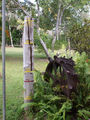 Picture of / about 'Moreton Telegraph Station' Queensland - Moreton Telegraph Station Flood Marker