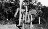 Picture relating to Canungra - titled 'Flying flox near Coomera Crossing aerial ropeway, ca. 1914'