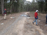 Picture relating to Ballarat-Creswick Regional Park - titled 'Rubbish dumping in forest near Invermay, Ballarat'