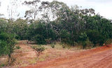 Picture relating to Bannockburn - titled 'Bannockburn bushland reserve'