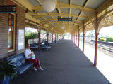 Picture relating to Cootamundra - titled 'Cootamundra Station'