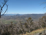 Picture relating to Tidbinbilla Range - titled 'Tidbinbilla Valley'