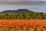Picture of / about 'Mount Lookerbie' Queensland - Mount Lookerbie