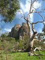 Picture relating to Mount Arapiles - titled 'Mount Arapiles Victoria'