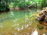 Picture of / about 'Laradeenya Creek' Queensland - Laradeenya Creek