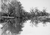 Picture relating to Molonglo River - titled 'Molonglo River, Winter Scene.'