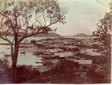 Picture of / about 'Thursday Island'  - Thursday Island settlement