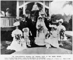 Picture relating to Hendra - titled 'Muir-McWhirter wedding party at the Brook, Hendra, Brisbane, Queeensland'