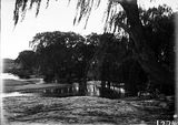 Picture relating to Canberra - titled 'Molonglo river scene, Acton pool, swimming hole near Canberra Hospital.'