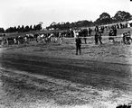 Picture relating to Acton - titled 'Race meeting. Scene at the meeting on Acton race course.'