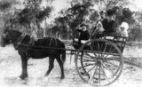 Picture relating to Pickanjinnie Creek - titled 'Bates Family at Pickanjinnie Creek Station, 1898'