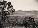 Picture relating to Mount Ainslie - titled 'View from Red Hill towards Mount Ainslie over Forrest area'