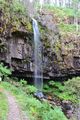 Picture of / about 'Bindaree Falls' Victoria - Bindaree Falls