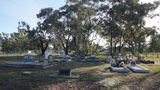Picture relating to Currabubula - titled 'Currabubula Cemetery'