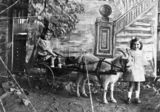 Picture relating to Fortitude Valley - titled 'Vel and Dorris Phillips pose with their goat sulky, Fortitude Valley, Brisbane, ca.1914'