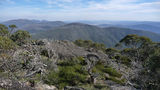 Picture relating to Mount Gingera - titled 'Mount Gingera summit'