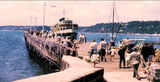 Picture relating to Mornington - titled 'Manly Ferry at Mornington'