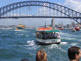 Picture relating to Sydney Harbour - titled 'Sydney Harbour FERRY BOAT RACE'