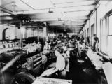 Picture relating to Brisbane - titled 'Letterpress department, Government Printing Office, Brisbane, 1921'