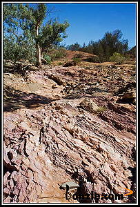 Picture of / about 'Arkaroola' South Australia - Arkaroola